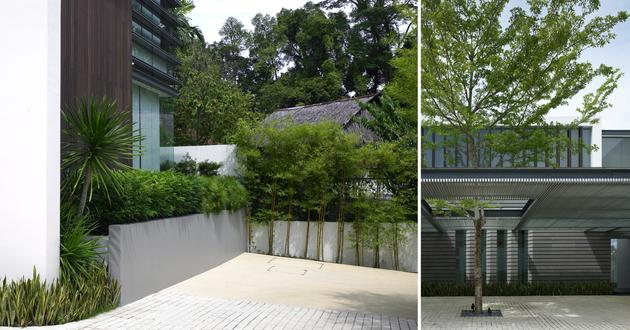 Ridout House Singapore Landscape Scda
